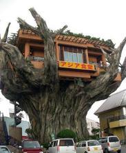 A ešte jedna reštaurácia (na Okinawe) ... tá prvá je ale najlepšia