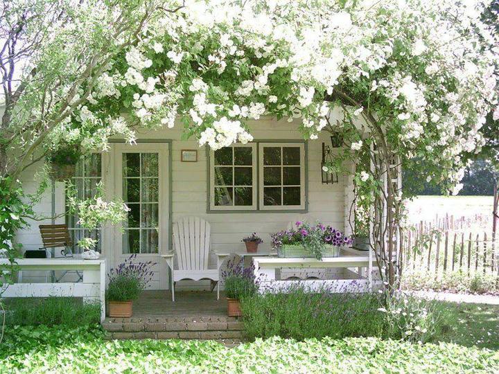 O verande (a spol) - Obrázok č. 7