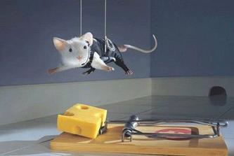 chcete sa zbaviť myší v dome? Mouseon impossible