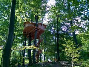 A v tomto môže prenocovať ktokoľvek z nás- nový projekt Mestských lesov Bratislava na Kačíne :-)