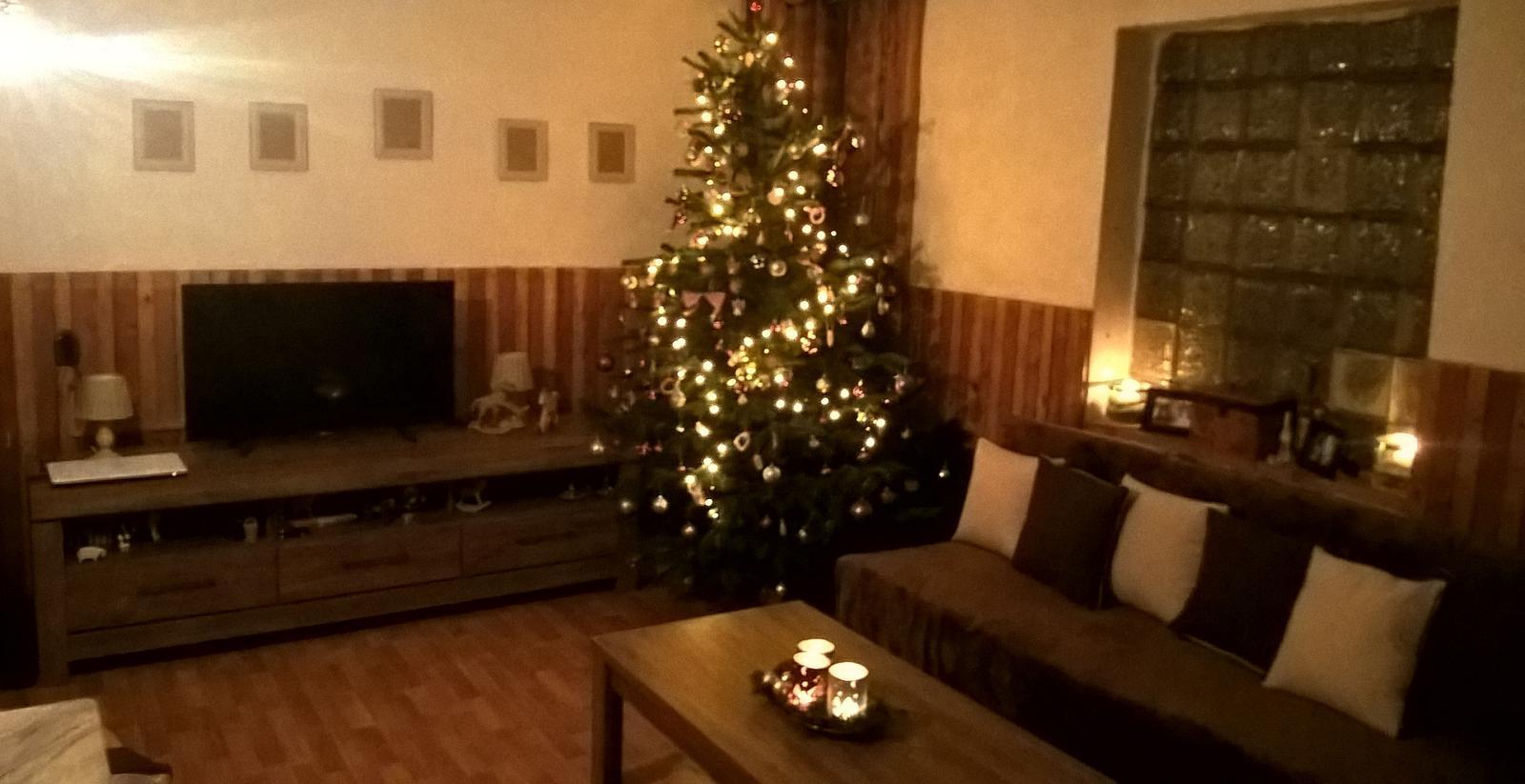 Spoločné hniezdočko - naše 1. vianoce už vo vypratanom dome :)