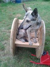 Bestiana z houpani uplne unesena nebyla, ale jako pozorovatelna prej dobry :-)