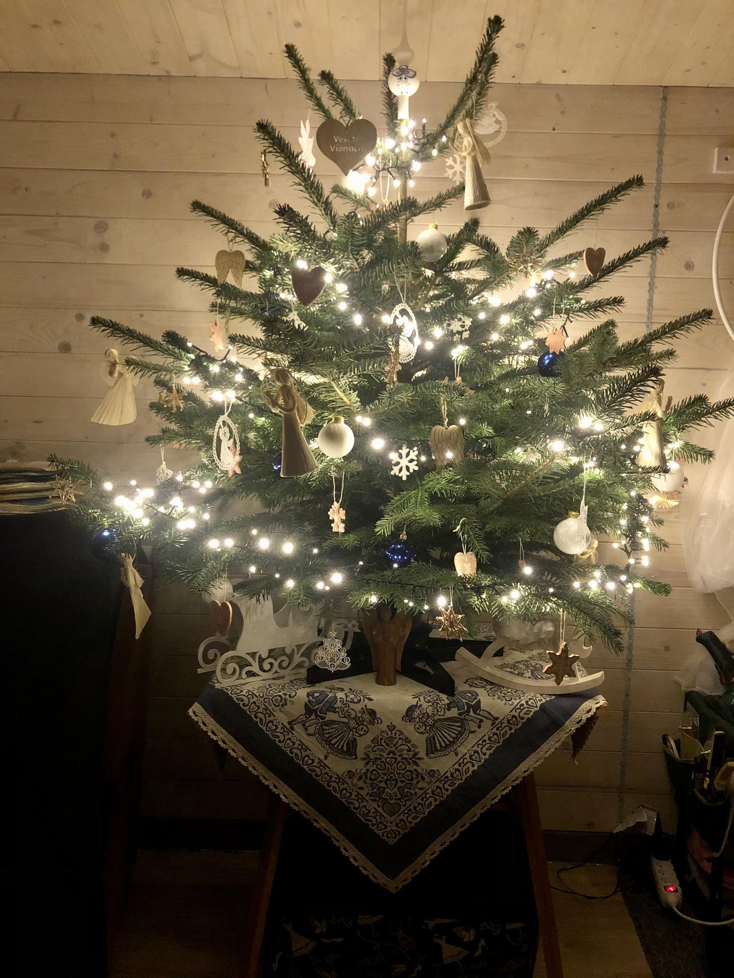 Vianoce na chalupe - Obrázok č. 9