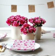 Barvička růžovka