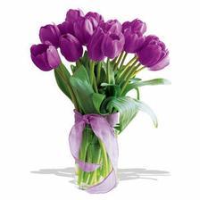 že by tulipány???