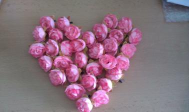 ružičky z Ebayu už dorazili, krajšie ako na obrázku