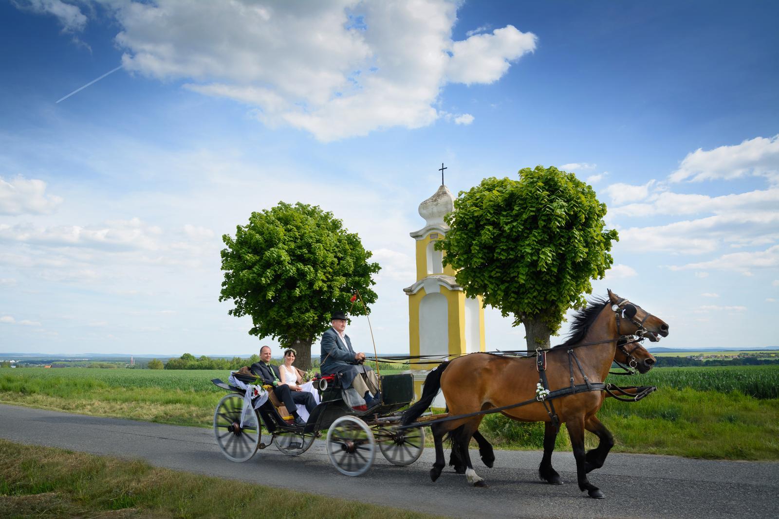 Svatební fotograf Karel Královec - kralovecphoto - Obrázek č. 28