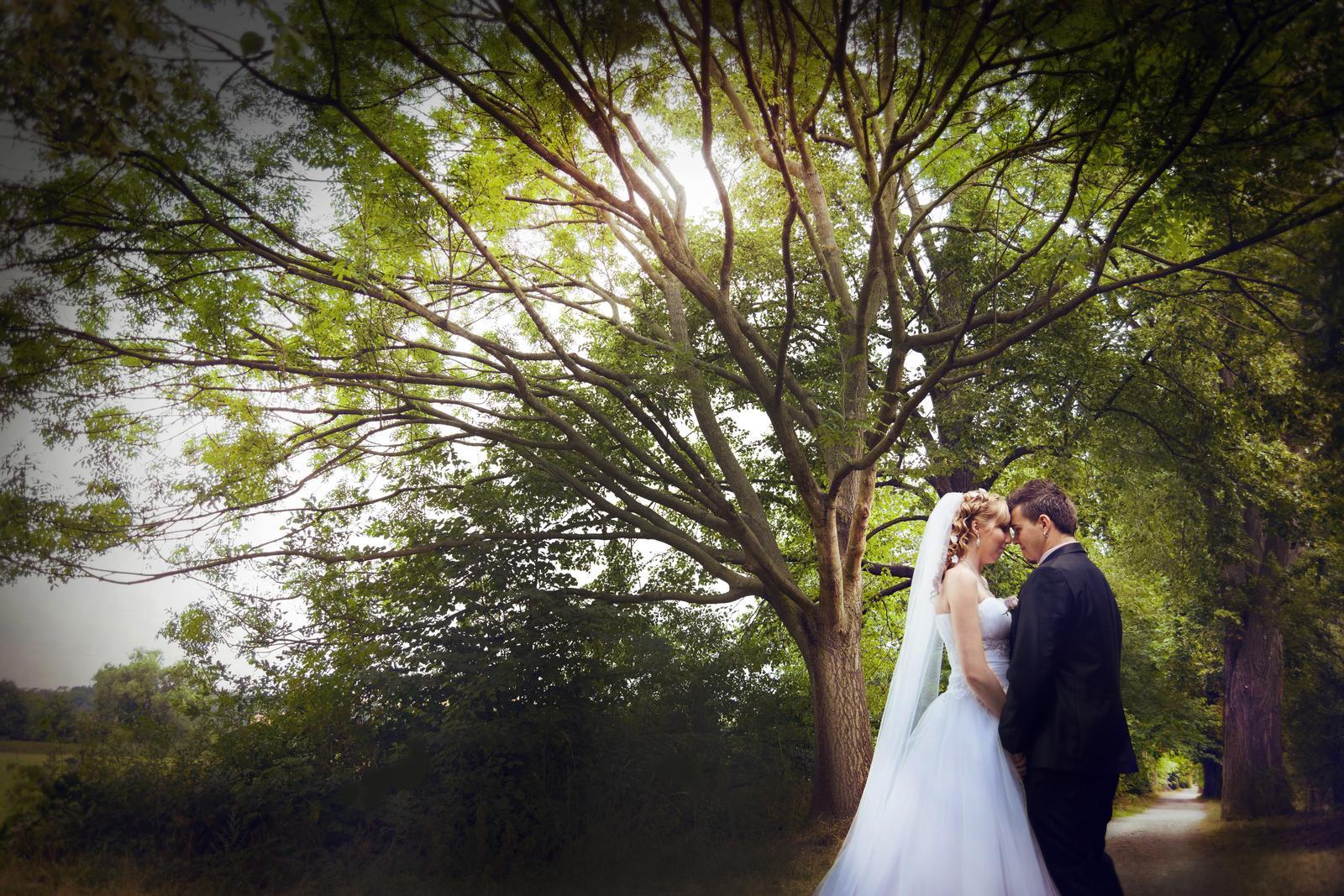 Svatební fotograf Karel Královec - kralovecphoto - Obrázek č. 41
