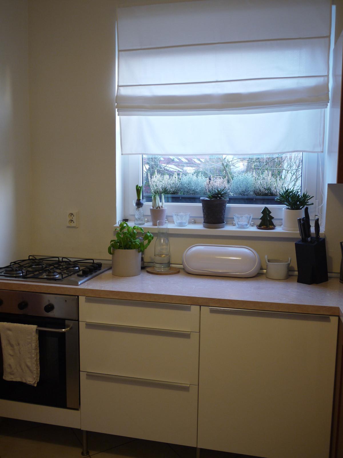 Proměny naší kuchyně - Poslední možnost objednat díly ke kuchyni Faktum. Měníme tedy sice jenom dvířka, ale... konečně bílá :-)