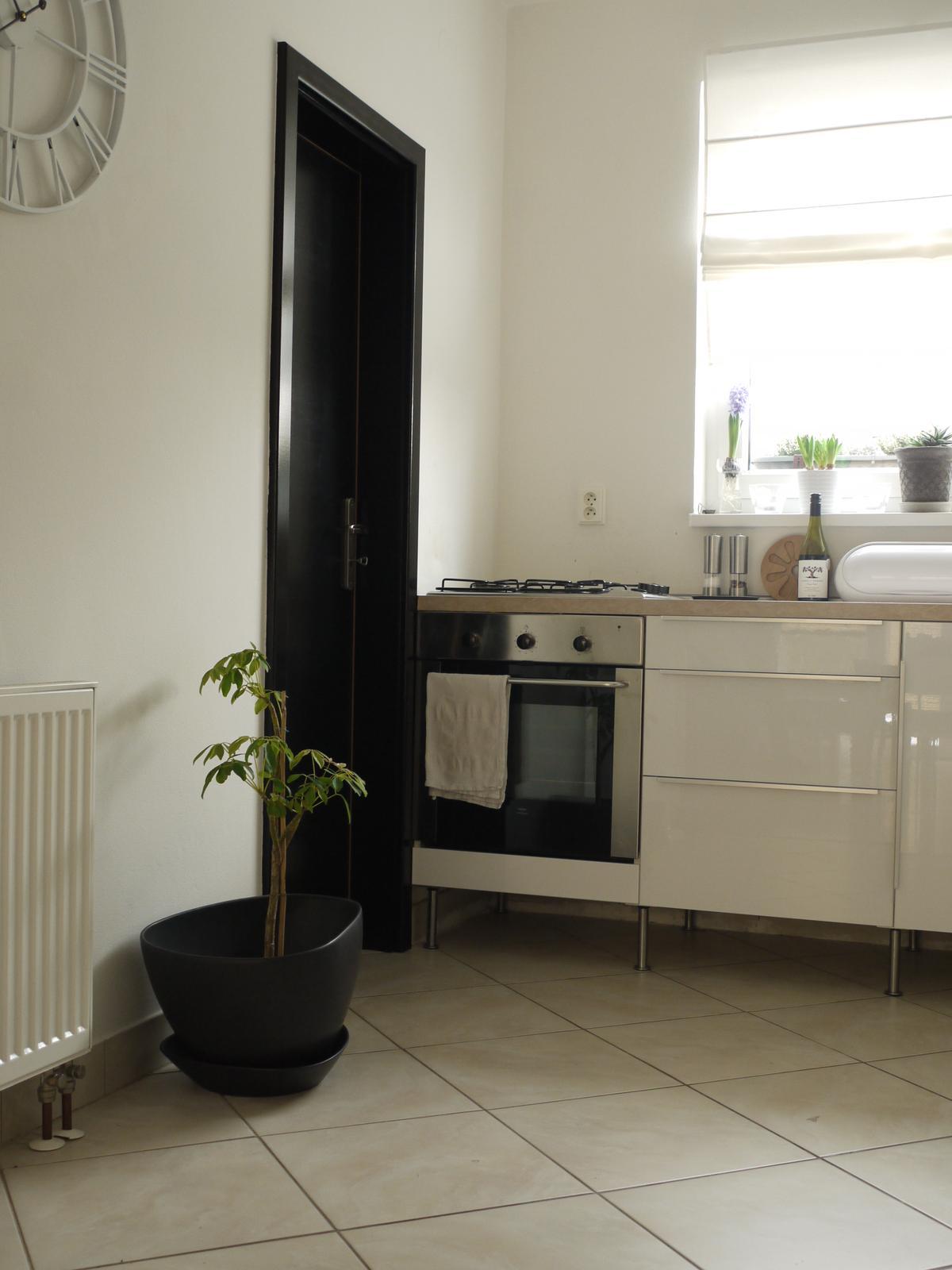 Proměny naší kuchyně - dveře - černý Eternal