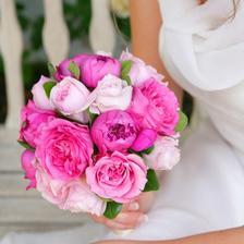 jen růže v několika odstínech
