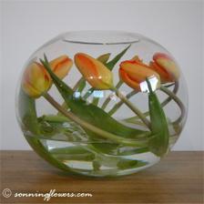 Tulipány na dekoraci stolu pro oddávajícího.