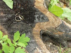... našli sme prstene :).