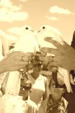 holoubci si dali pusinku na rozloučenou, ale letěli spolu:-), stejně jako my jdeme životem spolu