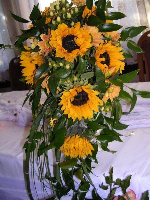 Vselico - moje oblubene kvety