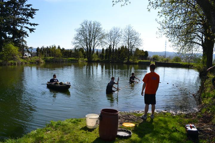 Naše chaloupka a zahrádka - hned vedle máme rybník