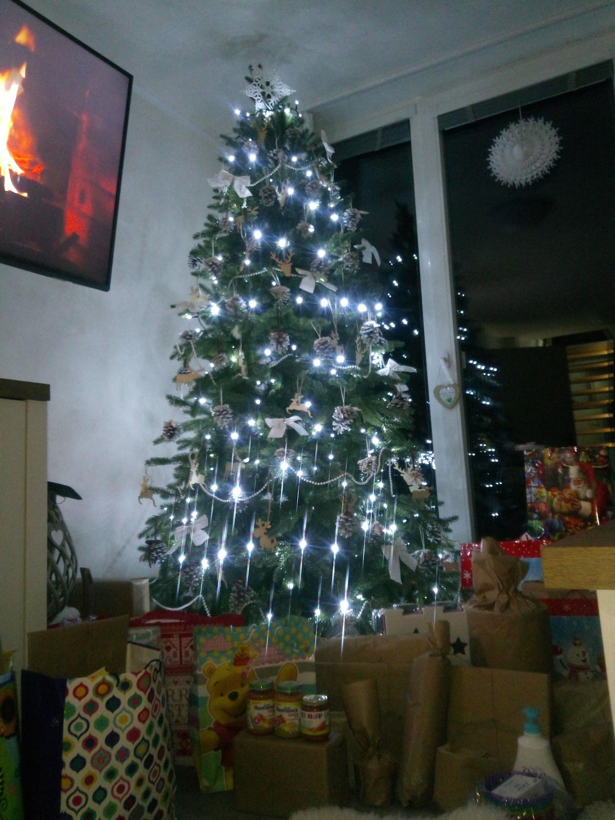 Naše chaloupka a zahrádka - První vánoce v naší chaloupce