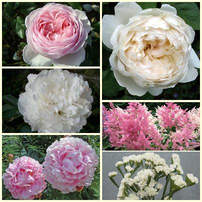 M&L 21.6.2013 - vybrané květiny do svatební kytice :-)
