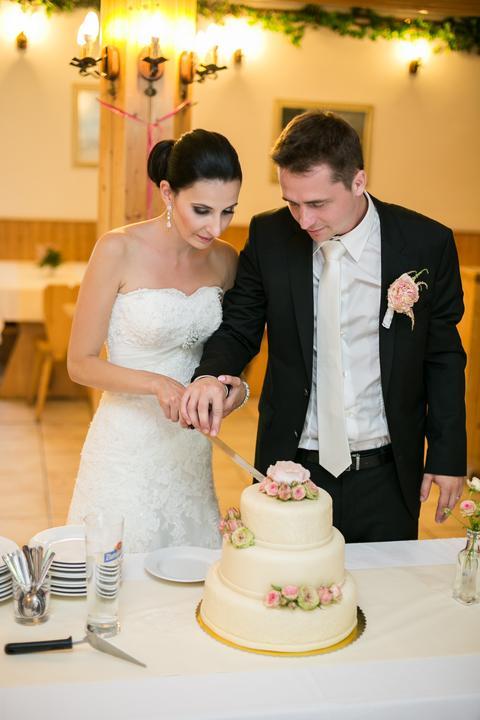 Lucie{{_AND_}}Martin - Krájení svatebního dortu
