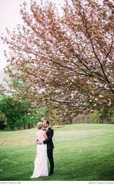 Jarní svatba - Obrázek č. 95
