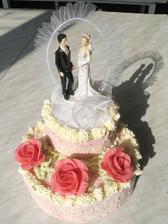 takový bude náš dort, jen bude ozdoben bíle s oranžovými růžičkami