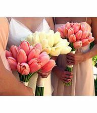 Překrásné...tulipány-to je něco...