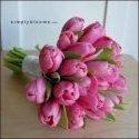 tulipánky, ale světle růžové a do toho ještě bílé frézie