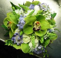 zelene orchidey su nadherne