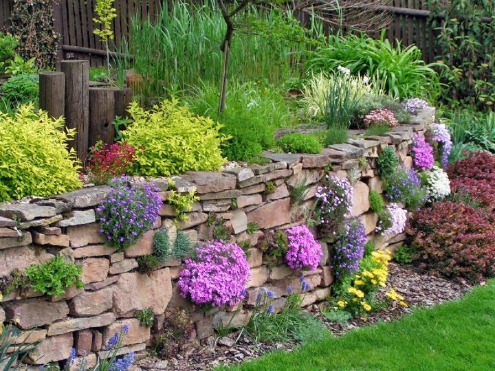 Zahrada ve svahu - inspirace - Obrázek č. 13