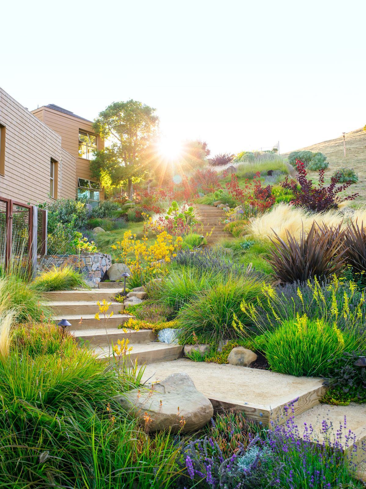 Zahrada ve svahu - inspirace - Obrázek č. 60