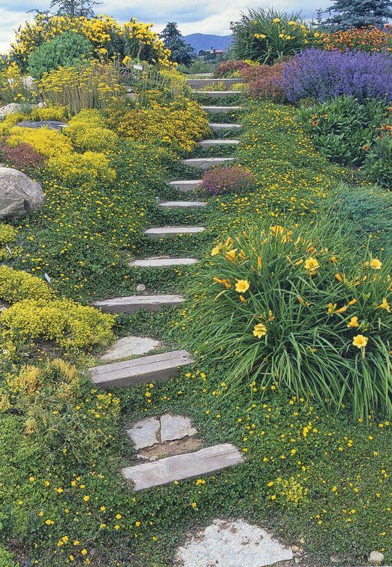 Zahrada ve svahu - inspirace - Obrázek č. 61