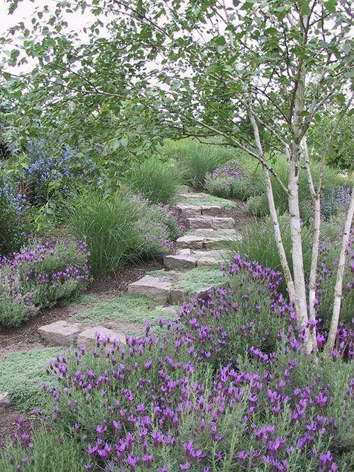 Zahrada ve svahu - inspirace - Obrázek č. 64