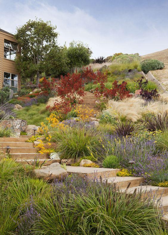 Zahrada ve svahu - inspirace - Obrázek č. 74