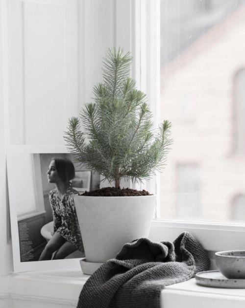 Vánoce minimalisticky - Obrázek č. 75