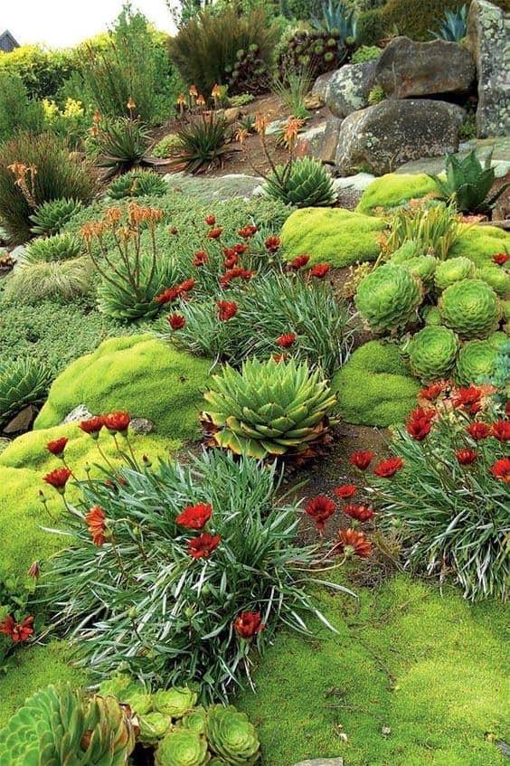 Zahrada ve svahu - inspirace - Obrázek č. 197