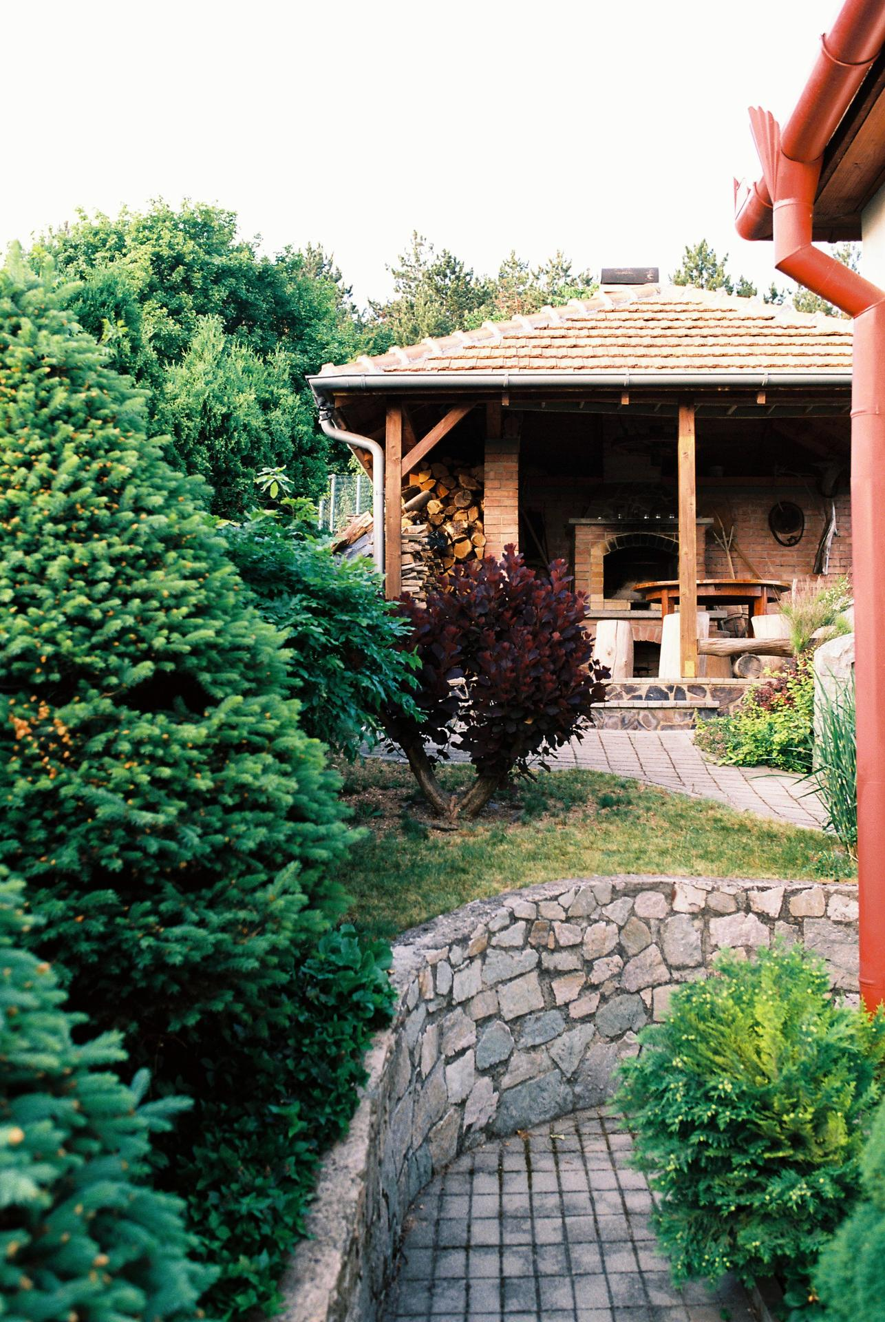 Zahrada u rodičů - Obrázek č. 39