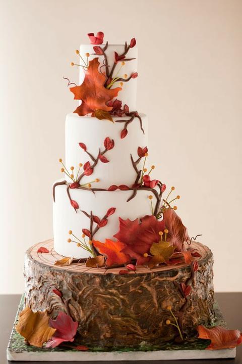Krásna jesenná svadba - Obrázok č. 80