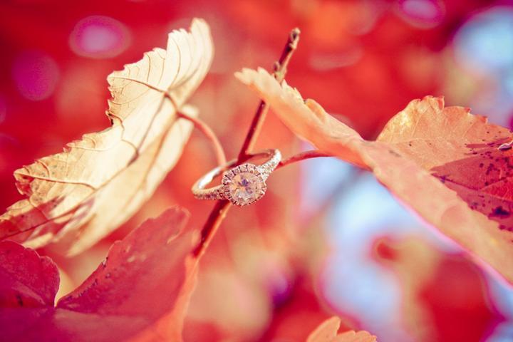 Krásna jesenná svadba - Obrázok č. 4