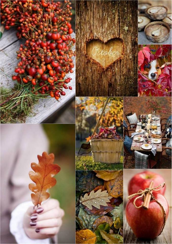 Krásna jesenná svadba - Obrázok č. 74