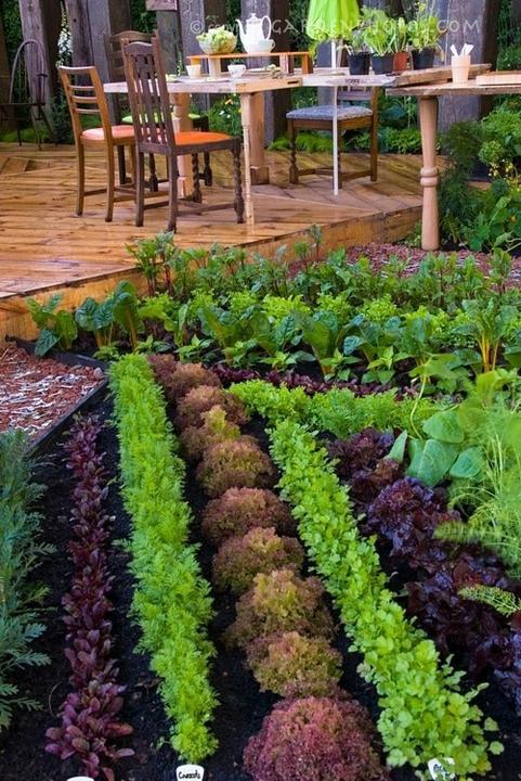 Zahrada - okrasna alebo uzitkova?