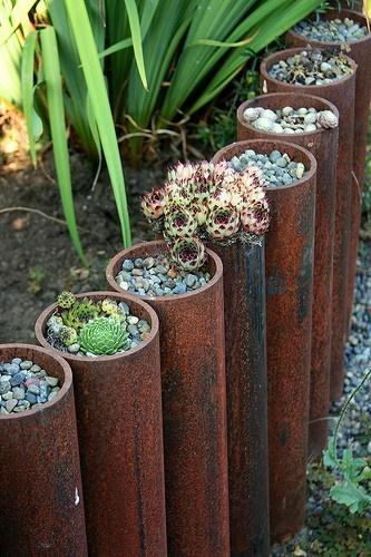 Zahrada - Obrázok č. 37