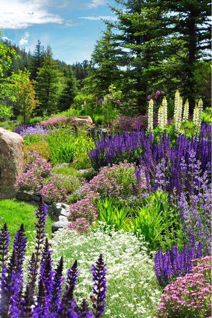 Zahrada - Obrázok č. 1