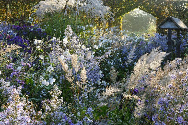 Zahrada - Obrázok č. 73