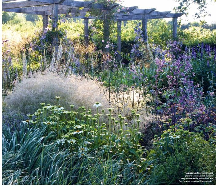Zahrada - Obrázok č. 74