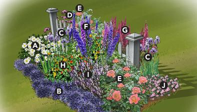 http://www.lowes.com/creative-ideas/gardening-and-outdoor/colorful-cottage-garden-plan/article