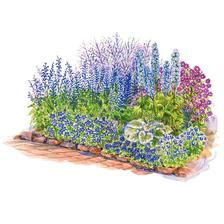 http://www.bhg.com/gardening/plans/colorful/blue-theme-garden-plan/