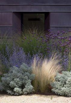 Zahrada - Obrázok č. 75