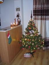 stvrta adventna nedela a aj stromcek som dnes postavila :)