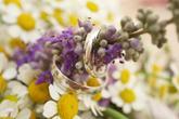 Svatební prstýnky na kytici