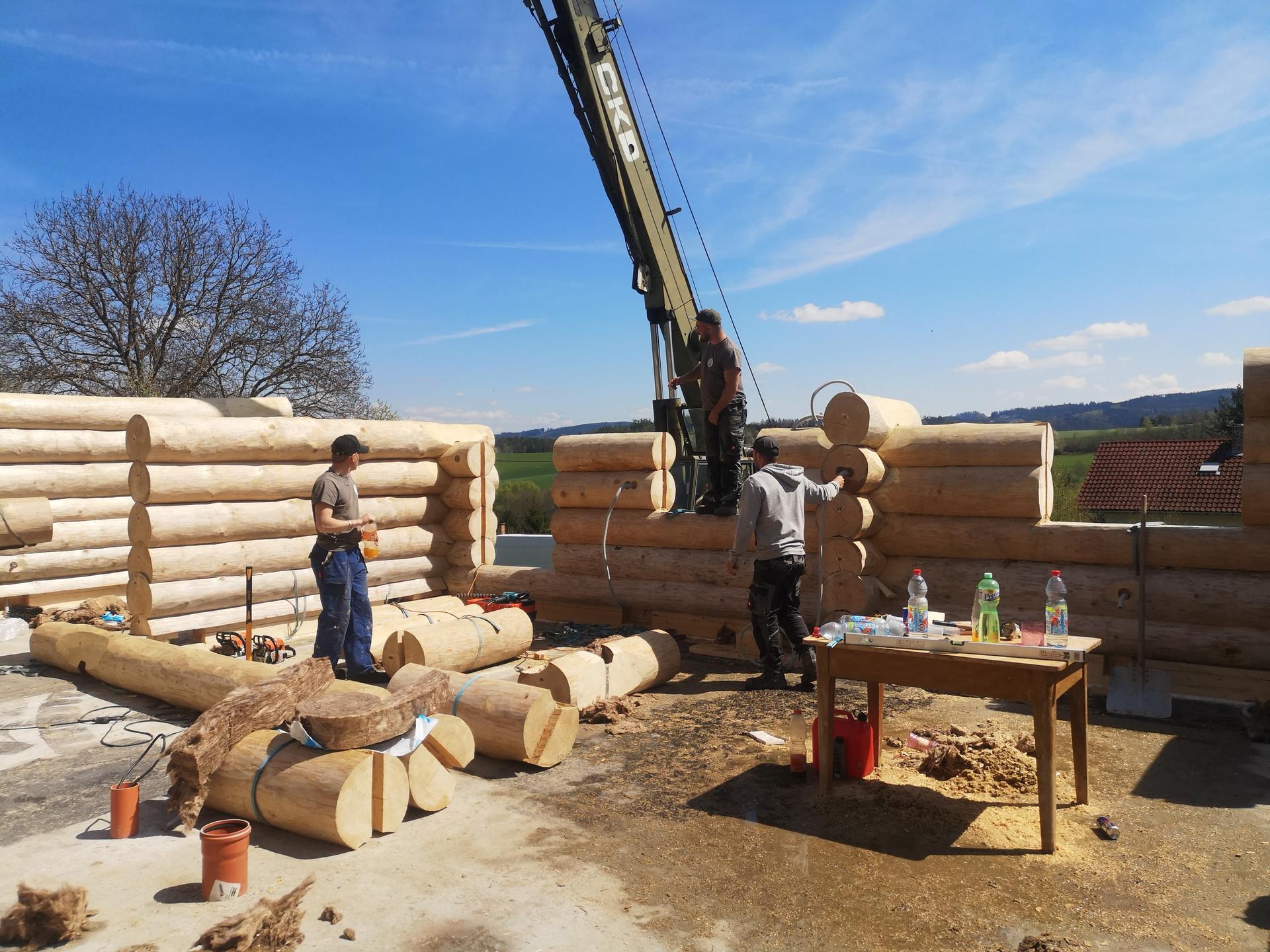 Stavíme náš srub - Obrázek č. 48